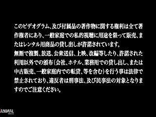 [sakuracircle] Ane Chijo Max Heart 01 (dvd 720x480 H264 Aac) [dcc74be1]